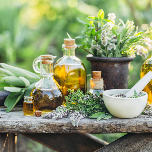 ClearCut to Speak About the Business of Herbs & Botanicals in an NBJ Digital Event