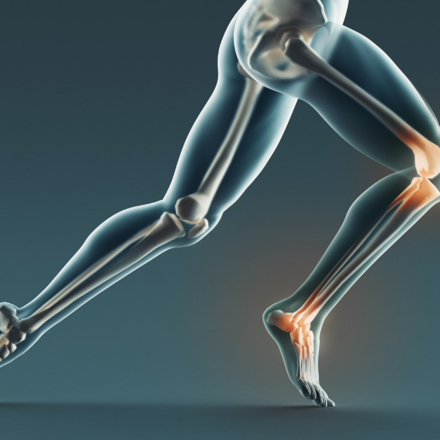 Looking Deeper Into the Bone and Joint Health Categories